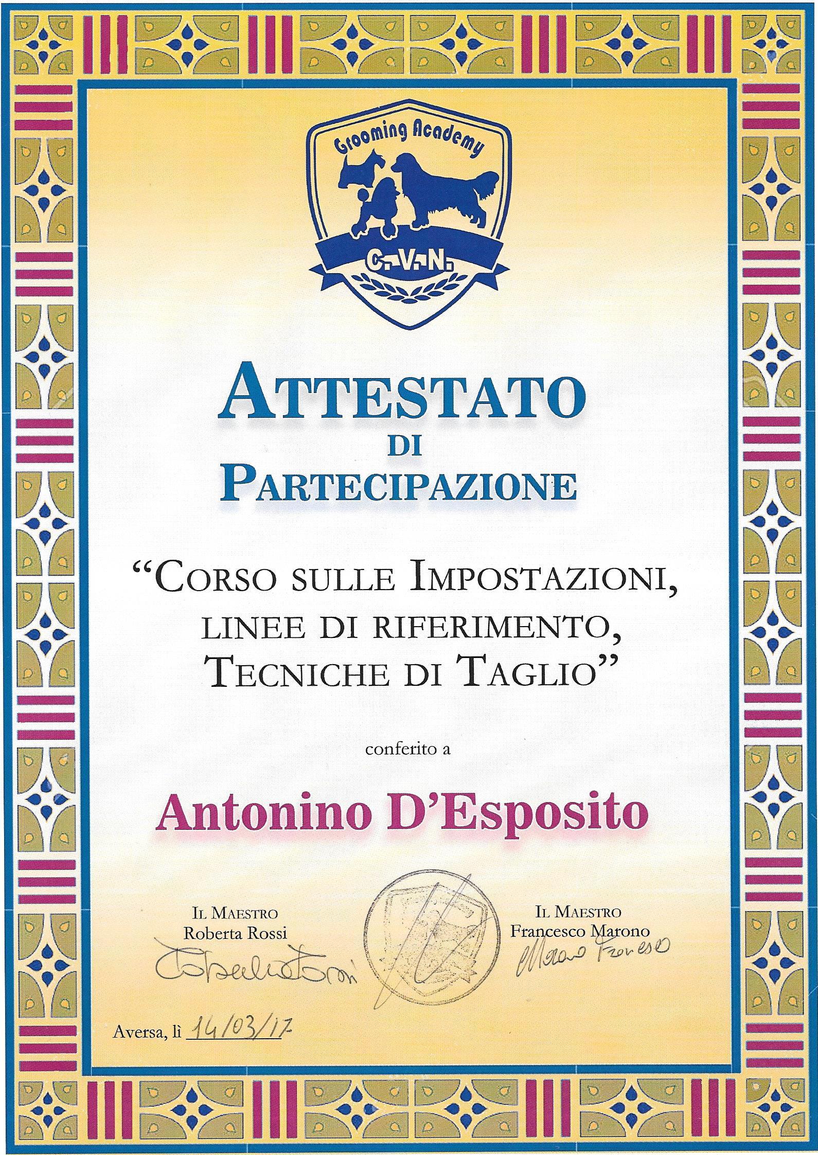 attestato Antonino secondo step